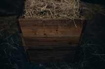 Close up view of the manger filled with hay