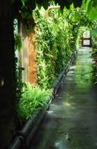 Botanical garden atrium.