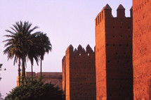 castle walls and palm trees