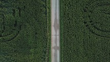 aerial view over corn field in Indiana