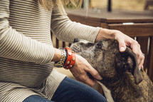 a pregnant woman petting her dog