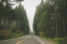 An empty highway running through a forest.