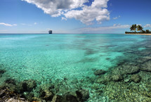coral reef and distant cruise ship