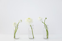 white flowers in clear vases