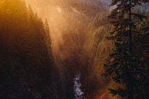 Wallace falls and sunlight shining on trees in a forest