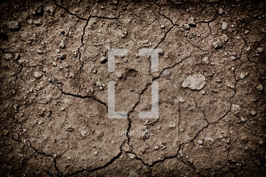 cracked desert soil