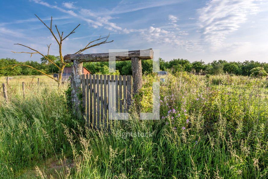rural fence and wildflowers in France