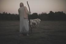 resting shepherd watching over his flock