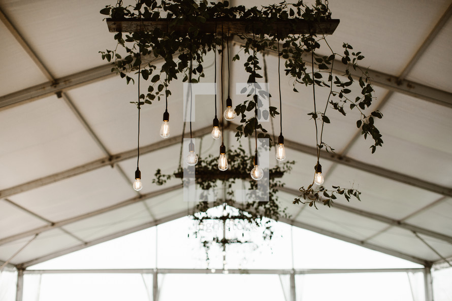 hanging lightbulbs on a light fixture at a wedding