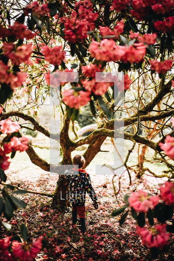 a girl in a rain jacket walking under a spring tree