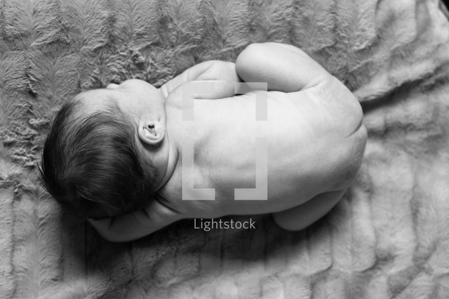 naked newborn on a blanket