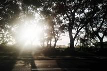 sunburst over a street