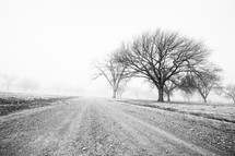 fog over a rural gravel road