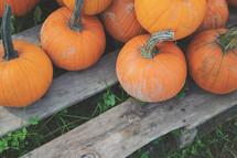 pumpkin background for bulletin event slide or social media graphic
