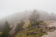 curvy mountain road in Mount Mitchell