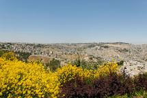 Jerusalem from south.