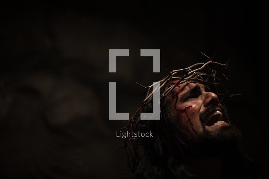 The suffering of Christ -- Jesus crying in pain while wearing His crown of thorns.