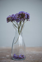 purple flowers in a clear vase
