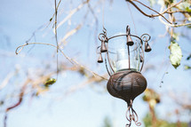 lantern hanging from a tree