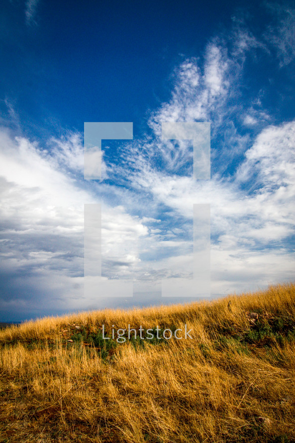 clouds over a field of tall grass