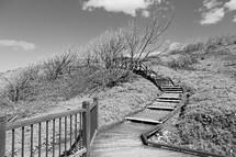 wooden boardwalk path in Australia