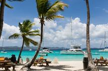 catamarans and palm trees on a beach