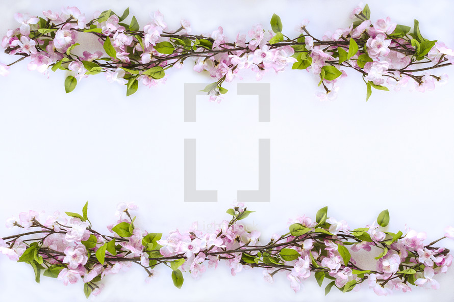 border of pink spring flowers on branches