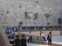 Morning prayer at the Western Wall, Jerusalem