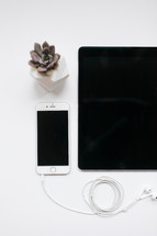 succulent plant, iPhone, iPad, and earbuds