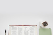 edge of an open Bible, pen, journal, and succulent plant on a white desk
