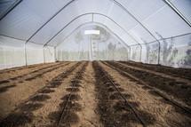 empty greenhouse in Kenya