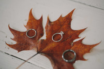 wedding bands on a fall leaf