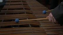 man playing a musical instrument, xylophone