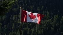 Canadian flag on a flagpole