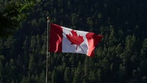 Canadian flag on a flagpole