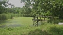 pond on a farm