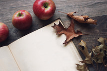 blank pages of a journal with apples and fall leaves
