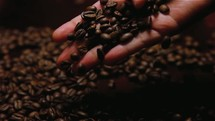 a hand full of coffee beans