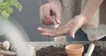 a woman putting potting soil into clay pots and planting seeds