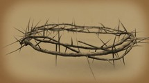 Close-up of 3D crown of thorns with depth of field.