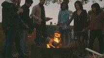 cooking hotdogs over a fire