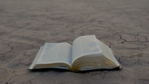 turning pages of a Bible on dry soil