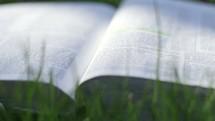 an open Bible in the grass
