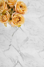 yellow roses on marble