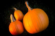 Three ripe pumpkins.