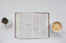 open Bible on a white background and a coffee mug