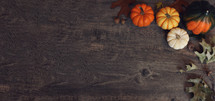 Thanksgiving fall pumpkins, autumn leaves, squash, branches and acorns on a horizontal rustic wood background with copy space