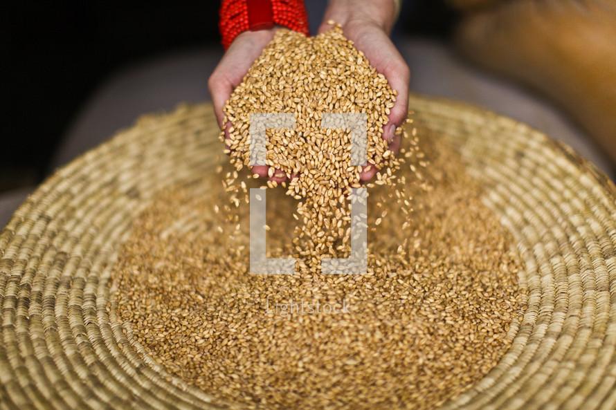 Bowl full of seeds