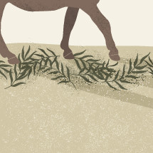 donkey and palm fronds illustration.