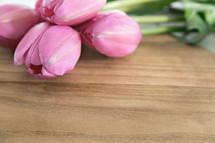 pink tulips on wood